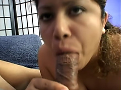 Hairy pussy of pregnant babe stuffed with cock